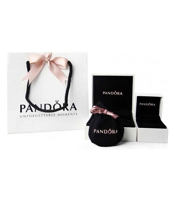 Pendientes en plata de ley Logo Pandora 290559CZ